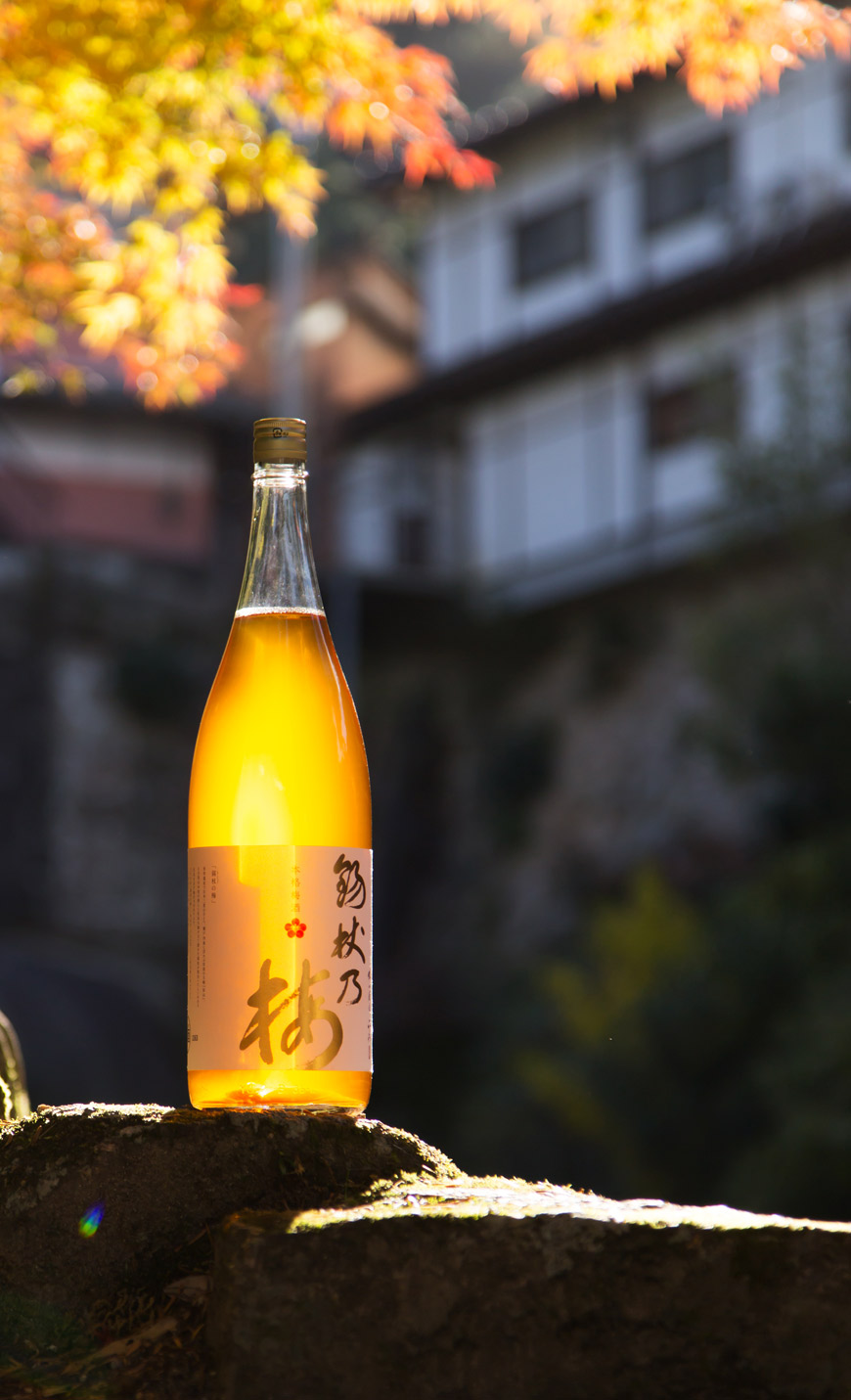 Shakujo no umeshu label design