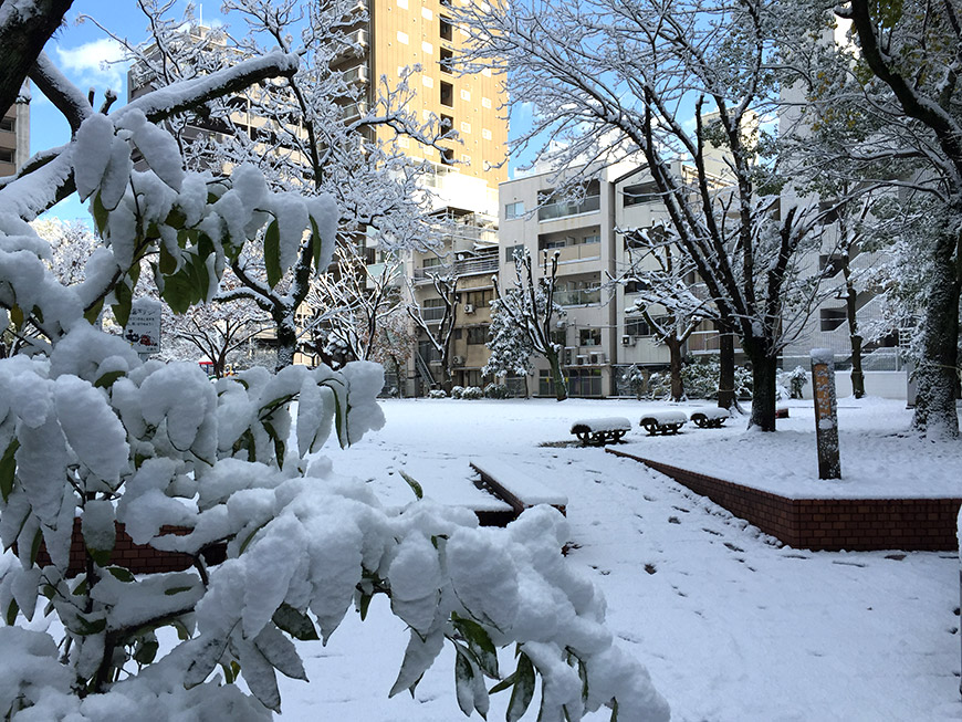 Snowy park in front of Nininbaori's office, Hiroshima
